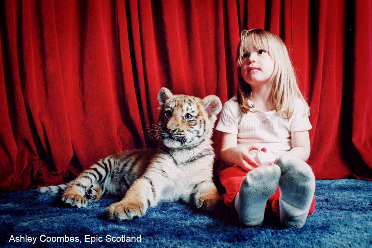 Tiger cubs at home