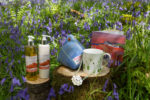 gifts in bluebells