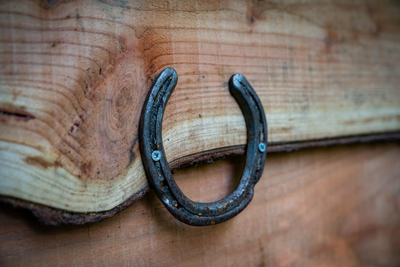 horse shoe good luck