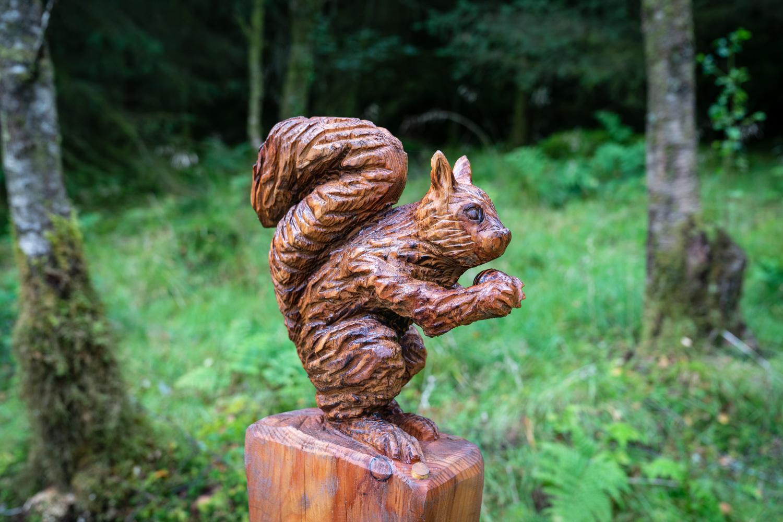 Squirrel carving