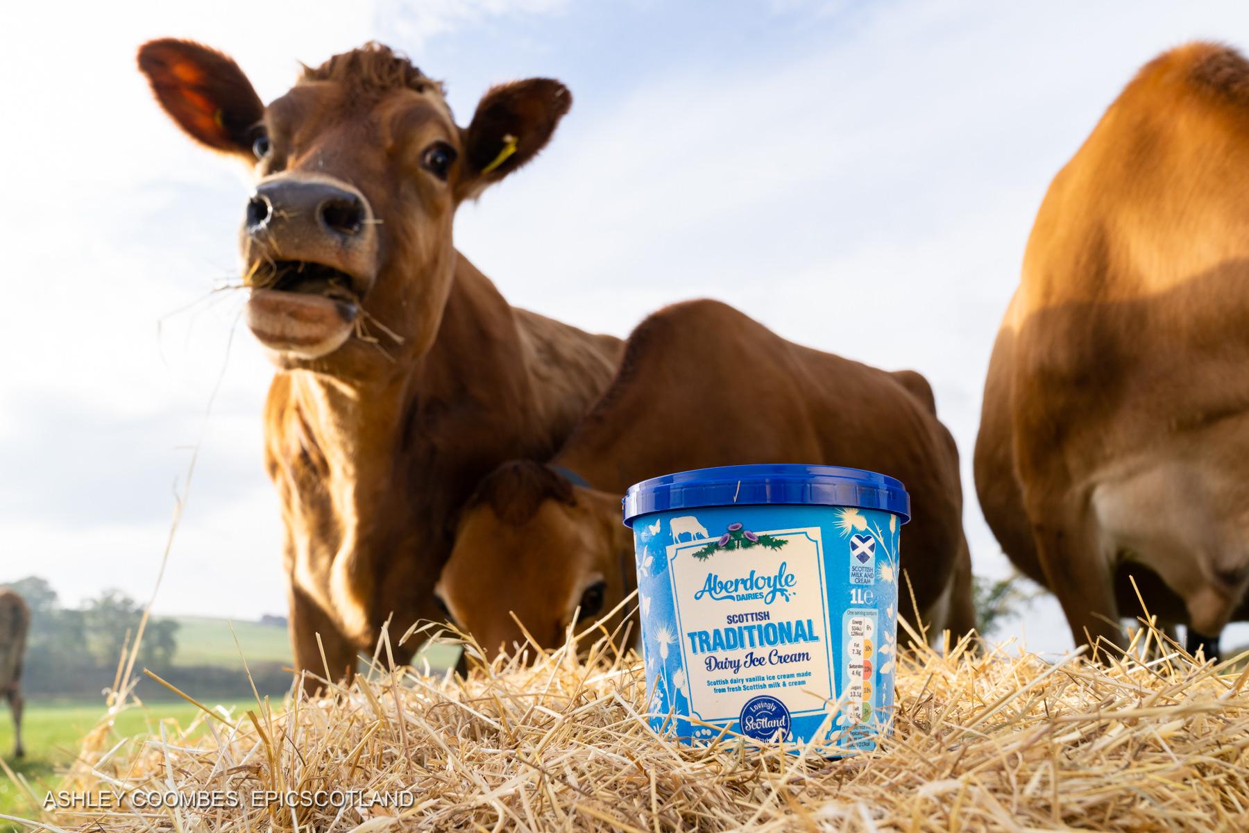 Graham's Dairy Farm ice cream Epic Scotland Photography