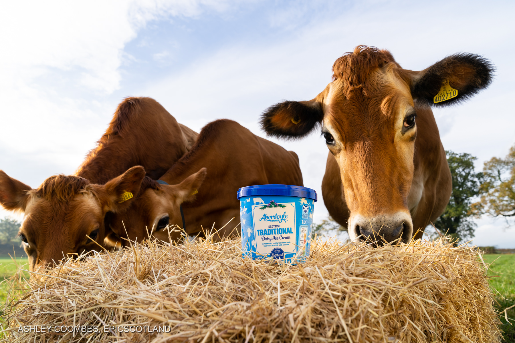 Graham's Family Dairy Epic Scotland Photography